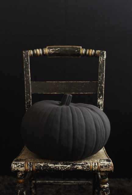 Boogies Boutique Black Pumpkin