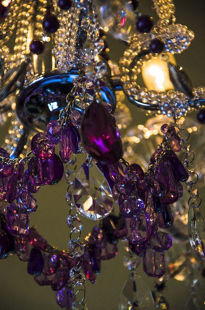 Boogie's Boutique Purple Violet