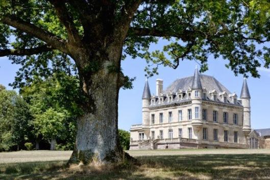 Chateau de la Goujeonnerie